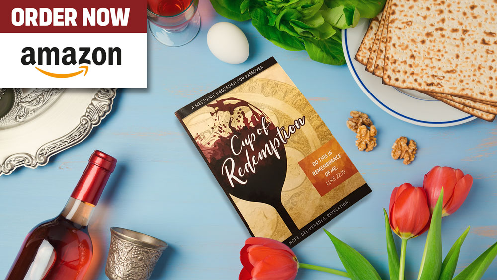 Cup of Redemption Haggadah
